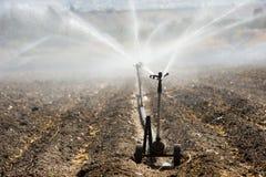 Irrigazione nell'Israele Fotografie Stock Libere da Diritti