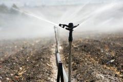 Irrigazione nell'Israele Fotografia Stock Libera da Diritti