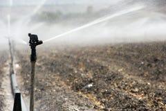 Irrigazione nell'Israele Immagine Stock