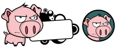 Irritated Little pig big head expression copyspace Royalty Free Stock Photo