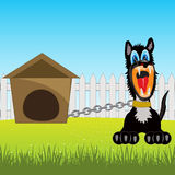 Irritating dog on chain. Vector illustration of the cruel dog on chain in courtyard Royalty Free Stock Photos