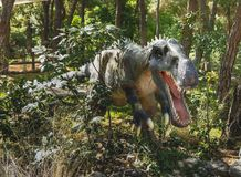 Irritator-早白垩纪/110百万年前 在迪诺 库存照片