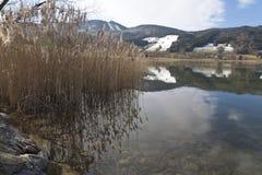 Irrsee湖,北部奥地利 免版税库存图片