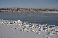 Irtish in deep autumn. Ice on banks, hoarfrost, clear sky, blue sky. clean white snow. Russia Royalty Free Stock Photo