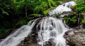 Iruppu cai Coorg, Índia sul Imagens de Stock Royalty Free