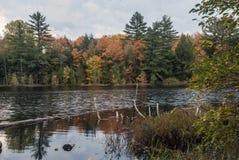 Irwin Lake, het Nationale Bos van Hiawatha, Michigan, de V.S. Royalty-vrije Stock Foto