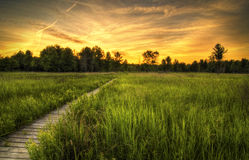 Irwin Prairie Sunset. Sunset over the Irwin Prairie in Toledo Ohio stock photography