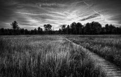 Irwin Prarie Sunset Arkivbilder