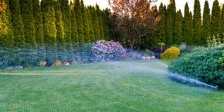 Irygacja zielona trawa z kropidło systemem obraz royalty free