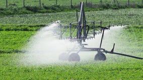 Irygacyjni kropidła nawadnia pola w Cypr zdjęcie wideo
