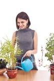 iryguje rośliny kobiety obrazy royalty free
