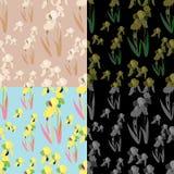 Irysów kwiaty ustawiają bezszwowego błękit również zwrócić corel ilustracji wektora Zdjęcia Stock