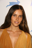 Isabel Lucas Stock Photography