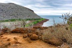 Isabela Island Landscape Stock Photo