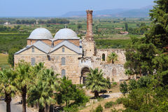 Isabey Mosque in Selcuk, Turkey. Isabey Mosque and palm tree in Selcuk, Turkey Stock Photos