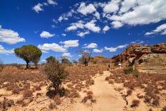Isalo hike landscape Stock Image