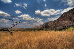 Isalo National Park, Madagascar. Isalo National Park with dry grass and fluffy clouds on blue sky, Madagascar Royalty Free Stock Images