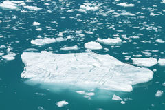 Isberg från Tracy Arm Fjord i Alaska Royaltyfri Bild