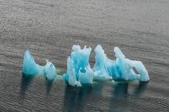 Isberg framåt under en sommarkryssning Arkivbild