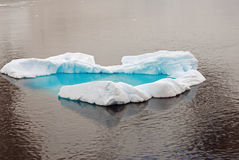 Isberg i Antarktis Arkivbilder
