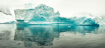 Isberg i Antartica Arkivfoton