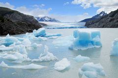 Isberg i vatten, glaciar fält av Patagonia Royaltyfria Bilder