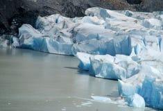 Isberg i vatten, glaciar fält av Patagonia Fotografering för Bildbyråer