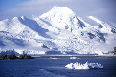 Isberg nära halvmåneön, Bransfield kanal, Antarktis Royaltyfri Bild
