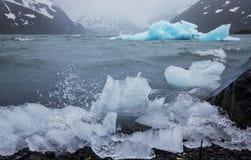 Isberg på Alaska Royaltyfri Bild