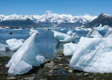Isberg på den Columbia glaciären Arkivfoton