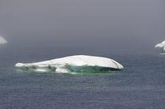 isbergsmältning royaltyfria bilder