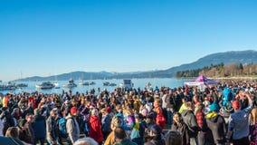 Isbjörnbad 2016 - i nyheterna Royaltyfria Bilder