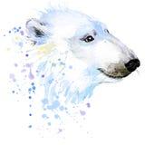 IsbjörnT-tröjadiagram, isbjörnillustration med färgstänkvattenfärgen texturerade bakgrund stock illustrationer