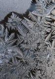 Isblommor - frostmodell Arkivfoto