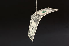 Isca do dinheiro Imagem de Stock Royalty Free