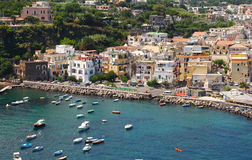 Ischia island. Summer view of Ischia island, south of Italy Stock Photos