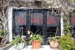 Ischia window Royalty Free Stock Photography