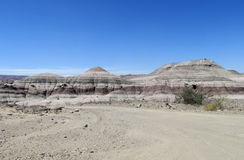 Ischigualasto national park desert landscape, Argentina. Wind-eroded rock formations of gray and white stone in Ischigualasto Provincial Park, Parque Provincial Stock Photo
