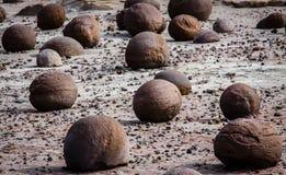 Ischigualasto naturreserv Argentina Arkivbilder