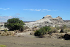 Ischigualasto valley Royalty Free Stock Photo