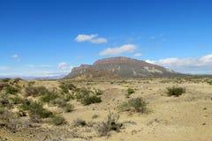 Ischigualastovallei stock foto's