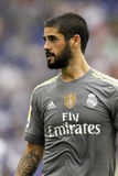 Isco Alarcon of Real Madrid royalty free stock images