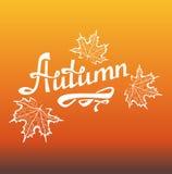 Iscrizione calligrafica di autunno Illustrazione Vettoriale