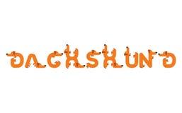 Iscrizione del bassotto tedesco Fonte del cane Animale domestico dell'iscrizione Alfa del segno Immagine Stock