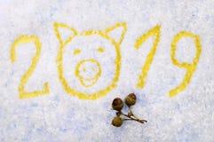 Iscrizione 2019 del ` s del nuovo anno con il simbolo di un maiale e delle ghiande su un fondo nevoso Fotografia Stock Libera da Diritti