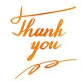 Iscrizione della mano di ringraziamento e progettazione di calligrafia Immagine Stock