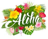 Iscrizione di Aloha Hawaii e piante tropicali Immagine Stock