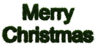 Iscrizione di Buon Natale Immagini Stock