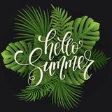 Iscrizione di estate Fondo tropicale delle foglie di palma Fotografia Stock Libera da Diritti