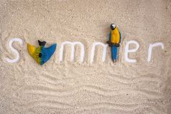 Iscrizione di estate su una sabbia con il pappagallo ed il pesce Estate flatlay immagine stock libera da diritti